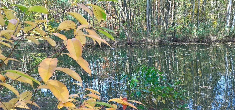"""18.10.2017.Miejsce połowu  plus zdjęcie PALI prezentującej skuteczne przynęty gumowe twister 1"""" RELAX."""