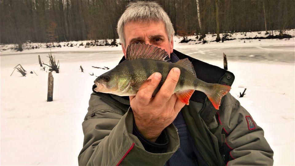 """05.02.2017. Czołówka wędkarstwa pod lodowego na """"wyspie"""" plus najbardziej fotogeniczne rybki złowione przez Zbyszka."""