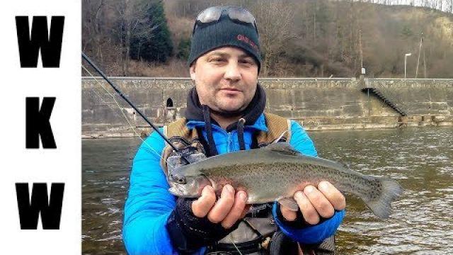 Wiosenne pstrągi na muchę | Wędkarstwo muchowe na OS Dunajec | Spotkanie ze żmiją