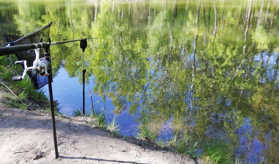 """21.05.2020 Łowienie"""" szuwarowo-bagienne""""w tak ładnym otoczeniu też może dać radość,szczególnie jak trafi się taki karp 50 + oczywiście cm."""