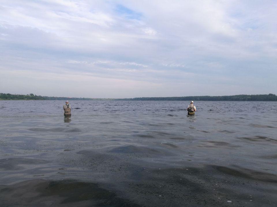 20.06.2019.TEAM KODA-FISHING na Dżierżnie Dużym.